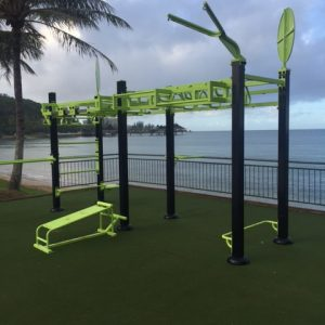 Go Zone Cross Fit Rig 3