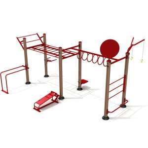 Go Zone Cross Fit Rig 1